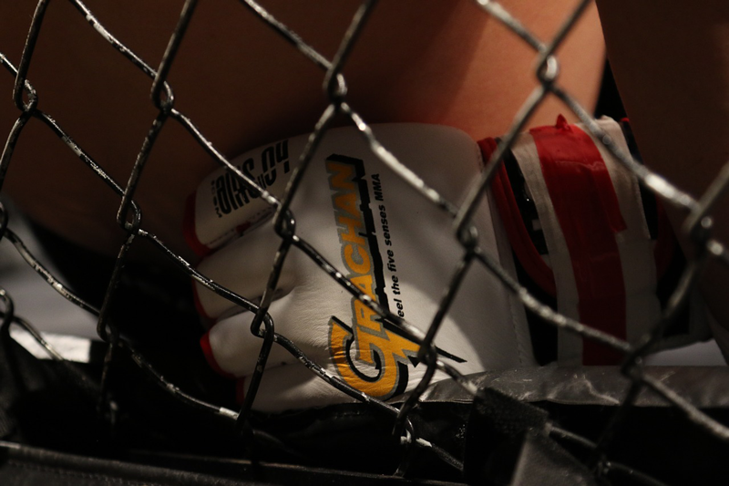 How to Choose MMA Gloves – A Complete Guide for Fighters